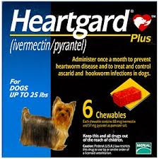 Heartgard Plus | Maryland Ave Pet Hospital | St. Paul, MN 55117 | Veterinarian